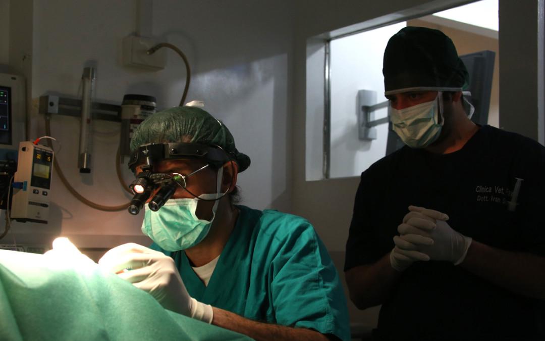 Cosa fare dopo un intervento chirurgico