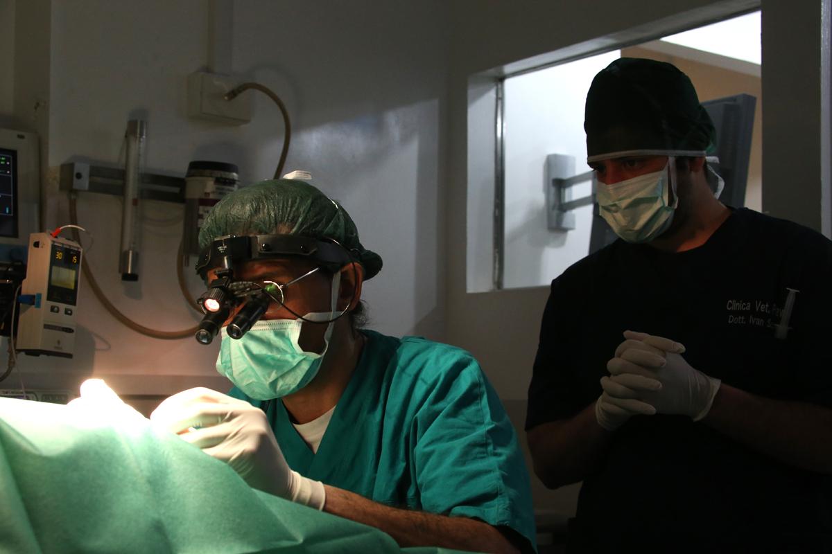 intervento prostata cosa fare intervento